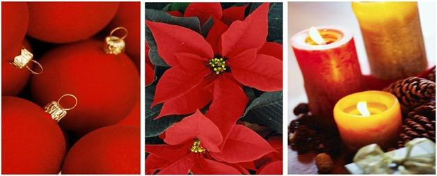 Christmas grouped pics