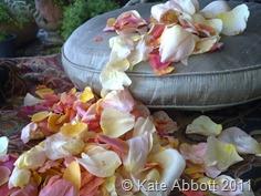Rose petal tea 409022011272